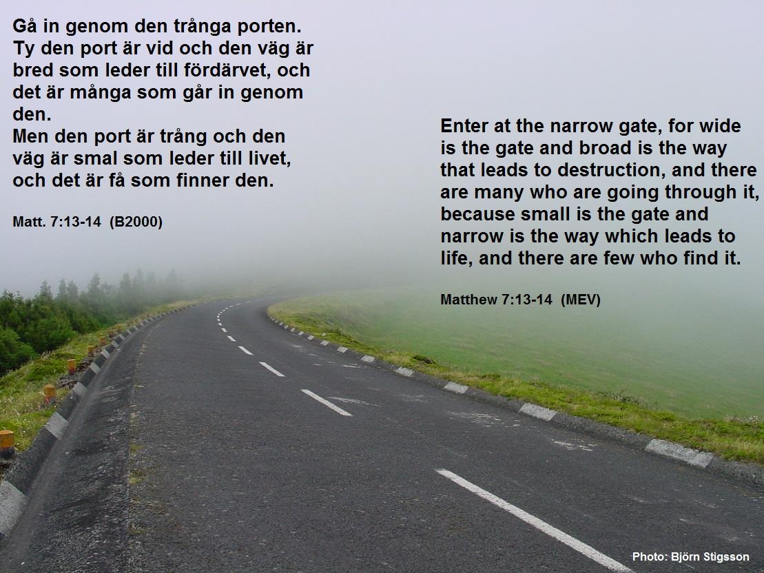 livet er en gave